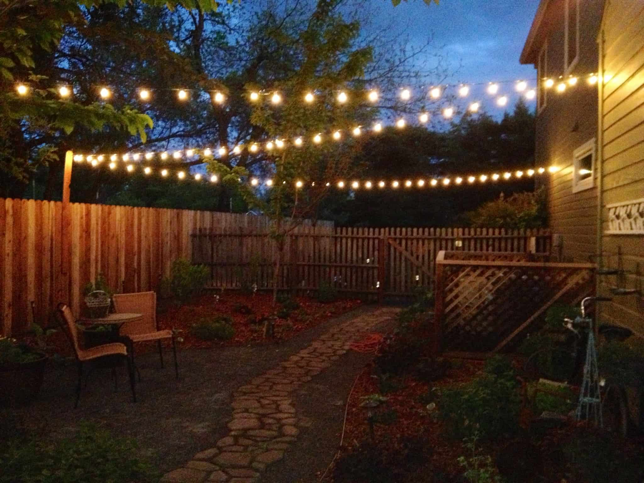 Backyard Wedding Lights