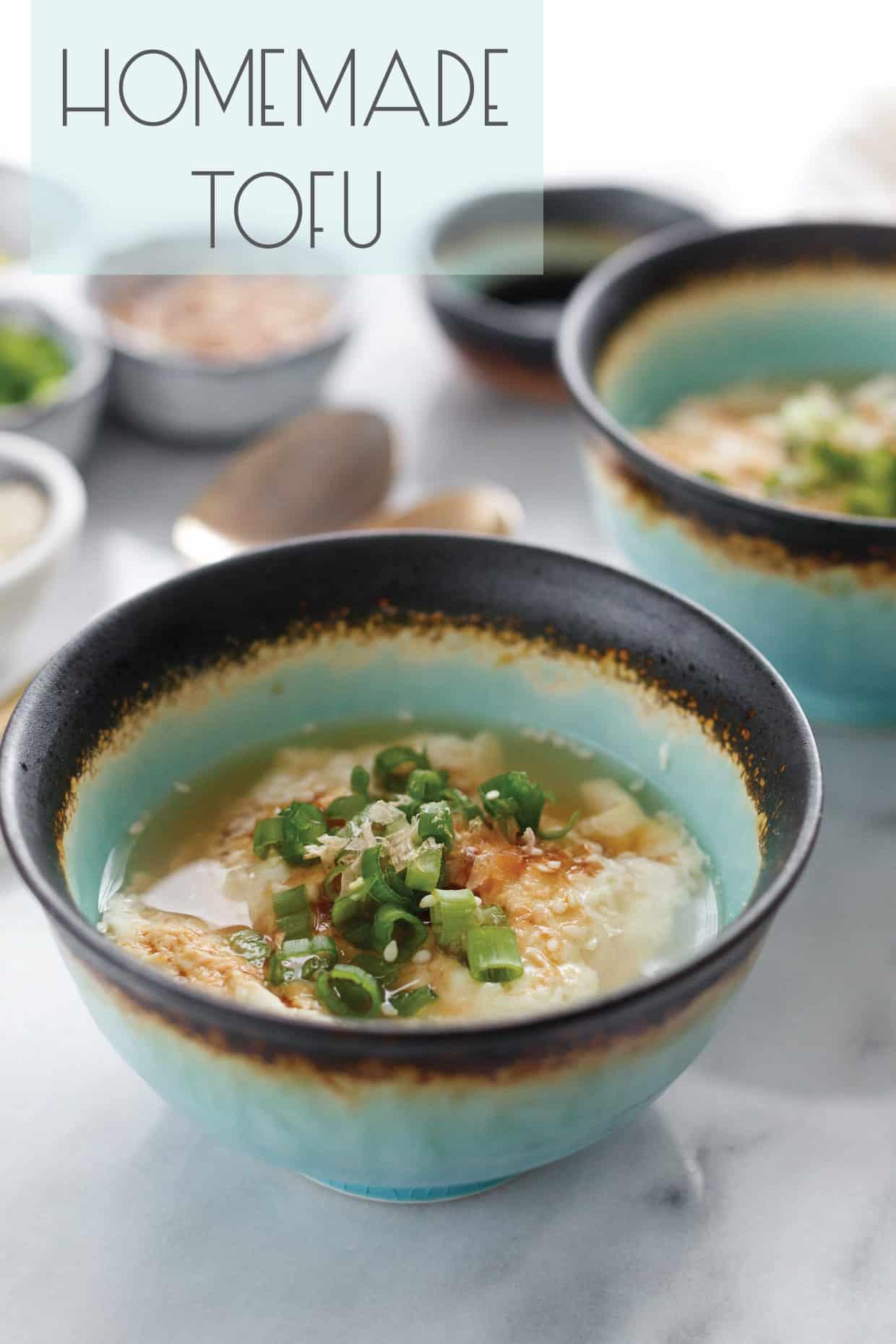 Oboro Tofu: Homemade Silken Tofu Curds