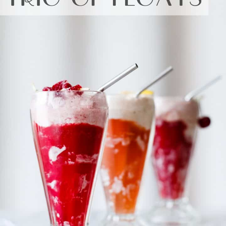 Hibiscus Ginger Ice Cream Floats