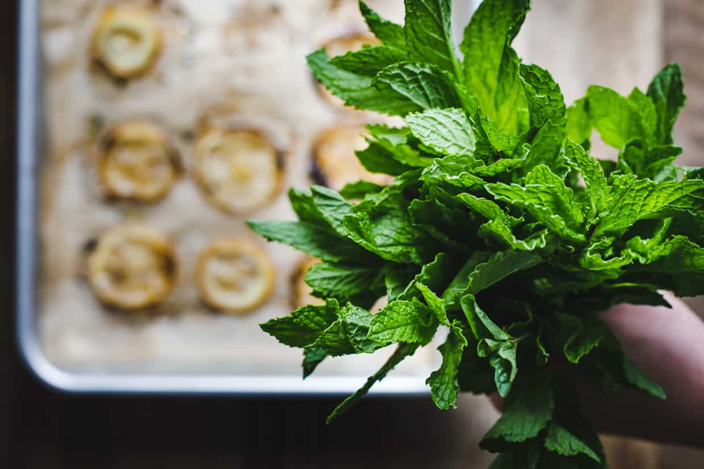 Roasted Lemon Mint Pesto & Ricotta Tartines, Two Ways