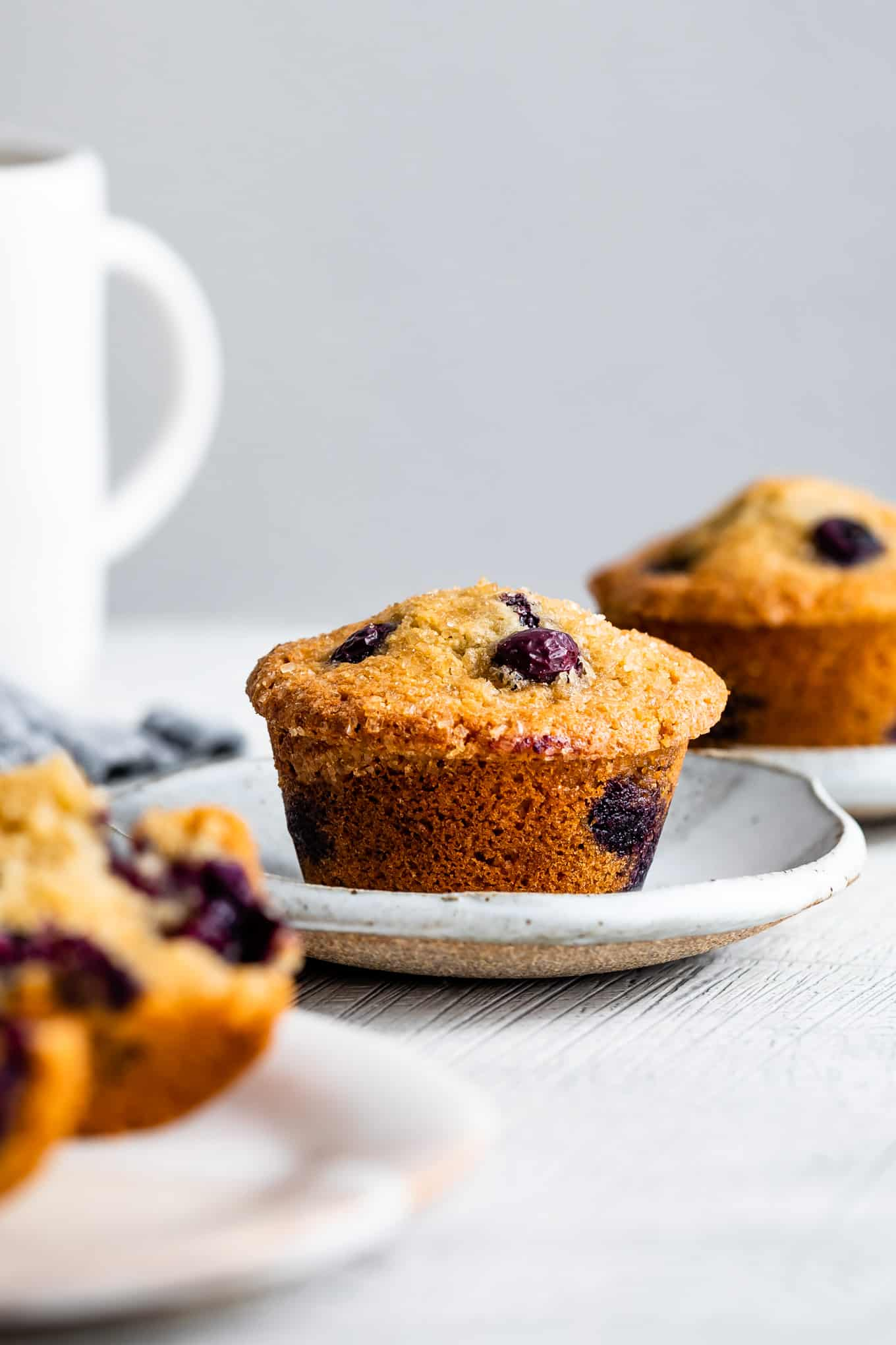 Gluten-Free Blueberry Muffin Recipe with Almond Flour